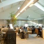 Aménagement de l'espace de coworking de Darwin.